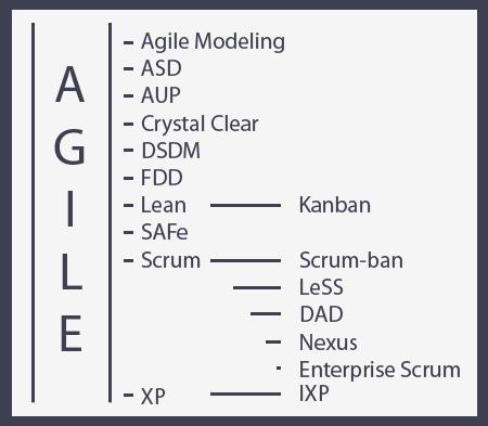 agile hierarchy